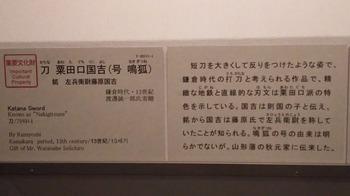 DSC_1197.JPG