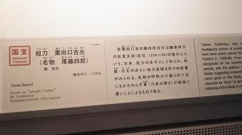 DSC_0809.JPG